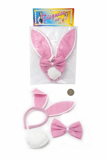 DISGUISE SET (BUNNY)